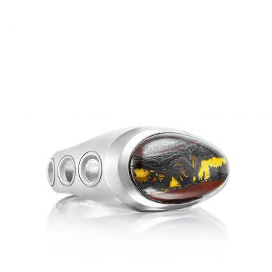 MR10839 Men's Silver Tiger Iron Unique Ring